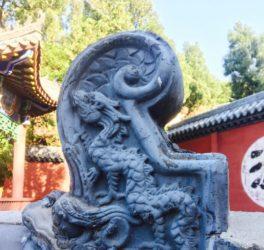 Fawang Shaolin Kung Fu China